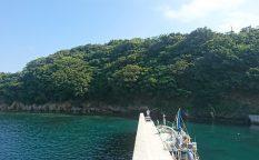 小渕浜からの撮影